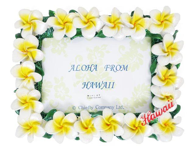 Yellow Plumeria Photo Frame | AlohaOutlet
