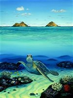 Lynne Domokos-Boyer Honu at Mokuluas (Art Print)