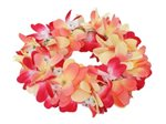 Tropical Plumeria Headband (Haku Lei)