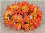 Orange Plumeria Headband (Haku Lei)
