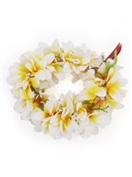 White & Yellow Plumeria Headband (Haku Lei)