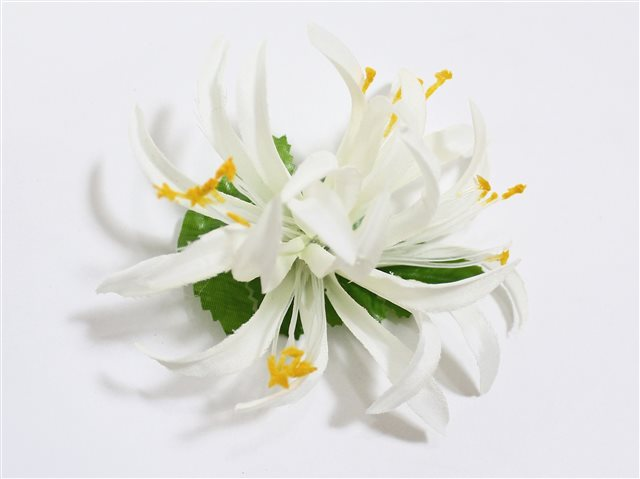White Extra Small Spider Lily Hair Clip 3.75""