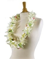 White & Pink Vanda orchid with rose Lei