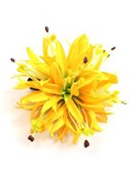 Yellow Large Spiderlily Hair Clip 5""