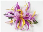 Gradation Lavender Small Spider Lily Hair Clip 5.5""