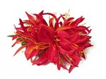 Red Large Spider Lily Hair Clip 6""