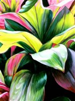 Sabado Art Studio Waimanalo Beauty Wall Art