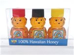Hawaiian Rainbow Bees RB/Mac/Christmas Berry Bear Mini Bottle Honey Sampler