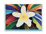 David Friedman Plumeria   Greeting Card