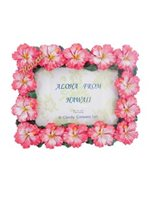 Pink Hibiscus Photo Frame