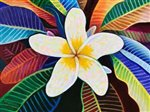 David Friedman Plumeria Mandala Wall Art 11x14